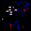 防災科学技術研究所 基盤的火山観測網